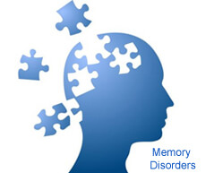 Memory and Its Disorders: A Workshop for Geriatric Care Managers